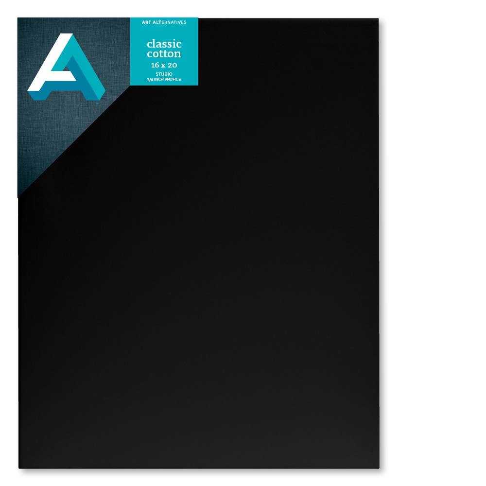 Art Alternatives Studio Canvas Black 16X20
