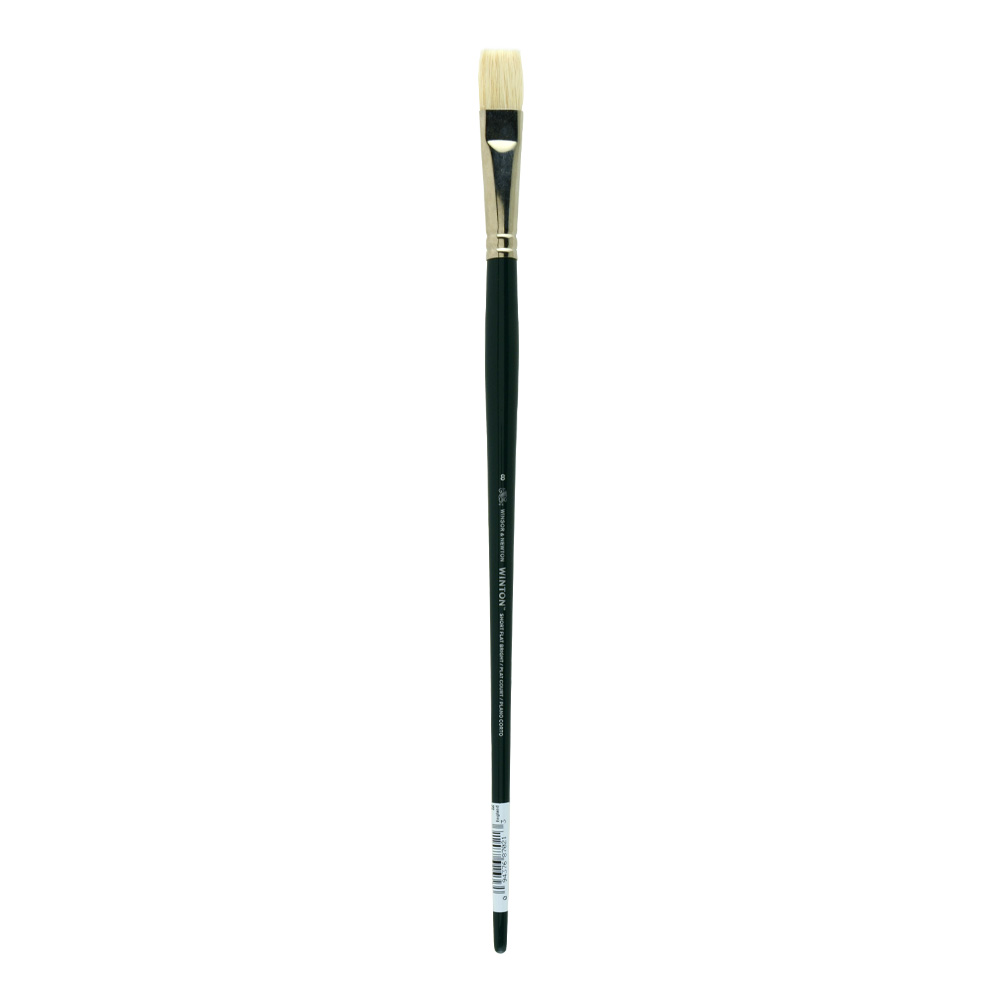 Winton Brush Natural Bristle Bright 8