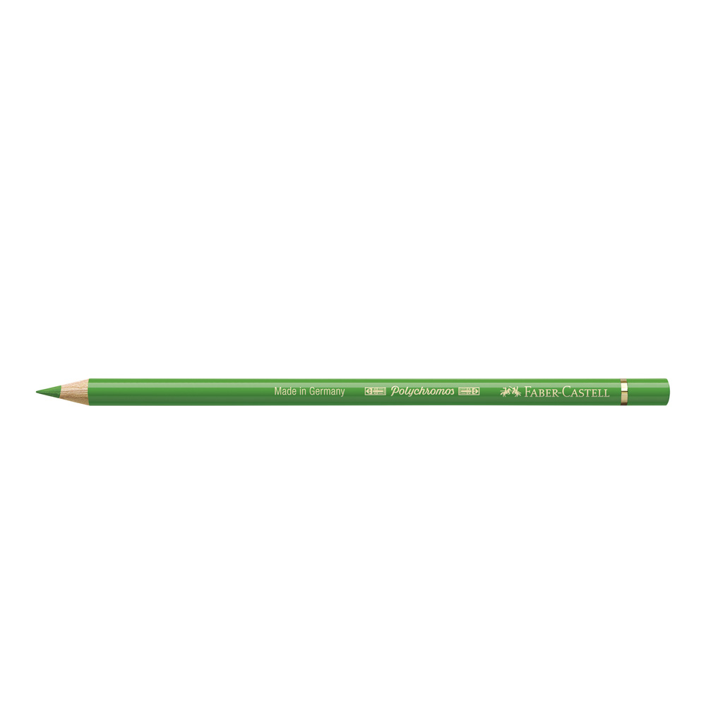 Polychromos Pencil 112 Leaf Green