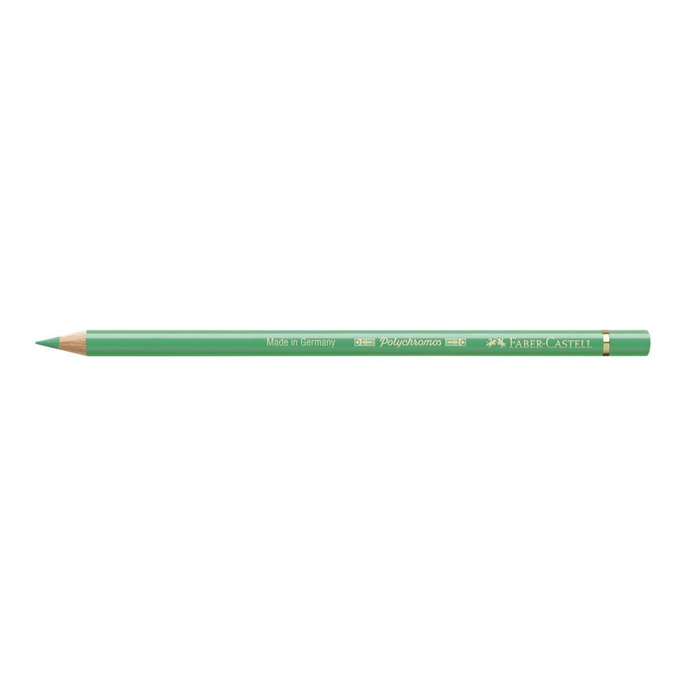 Polychromos Pencil 162 Light Phthalo Green
