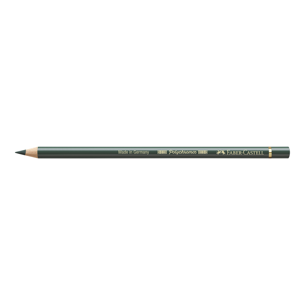 Polychromos Pencil 165 Juniper Green