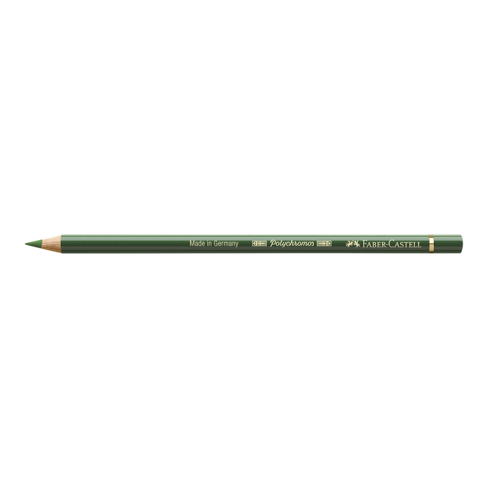 Polychromos Pencil 167 Permanent Green Olive