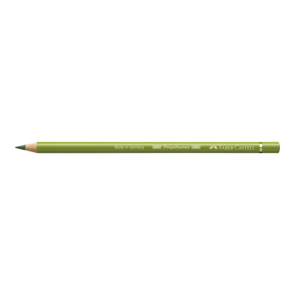 Polychromos Pencil 168 Earth Green Yellowish