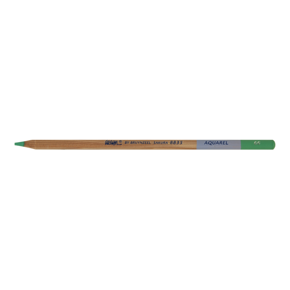 Bruynzeel Aquarelle Pencil Green #66