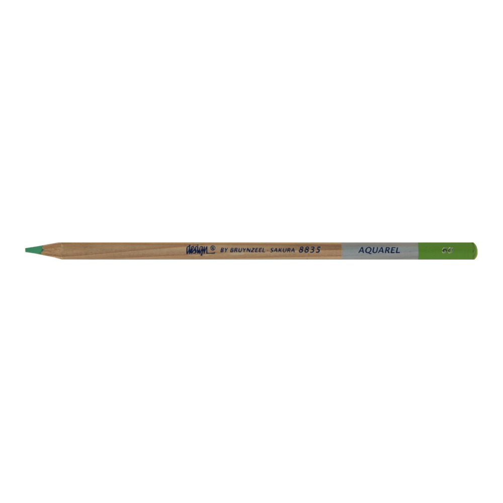 Bruynzeel Aquarelle Pencil Lt Green #60
