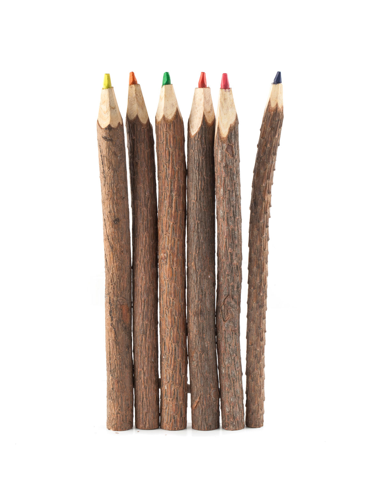 Kikkerland Twig Colored Pencils Set Of 6