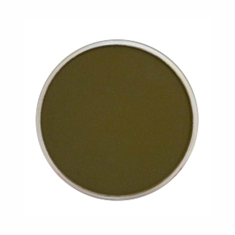 Panpastel Color Yellow Ochre Extra Dark