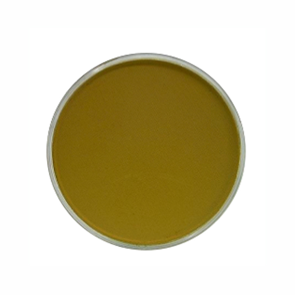 Panpastel Color Yellow Ochre Shade