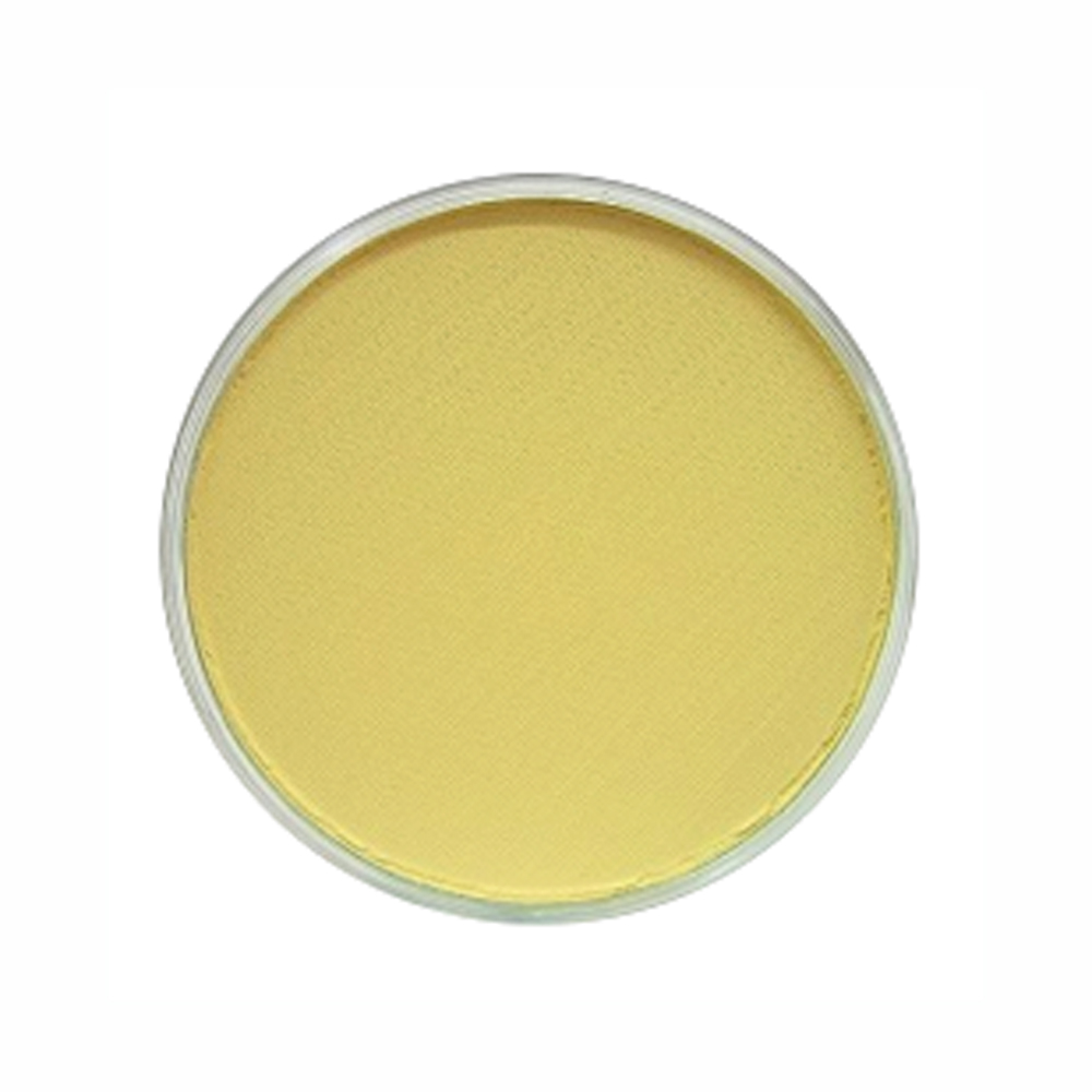 Panpastel Color Yellow Ochre Tint
