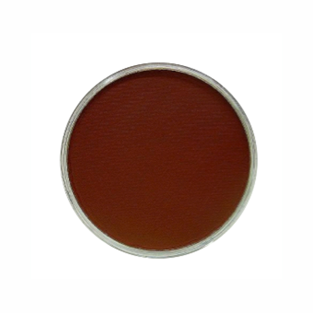 Panpastel Color Red Iron Oxide Shade