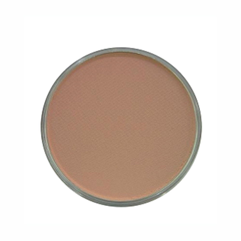 Panpastel Color Red Iron Oxide Tint