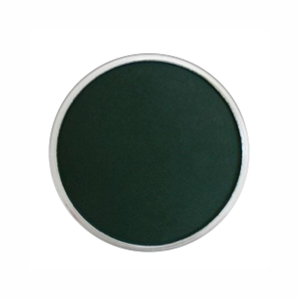 Panpastel Color Phthalo Green Extra Dark