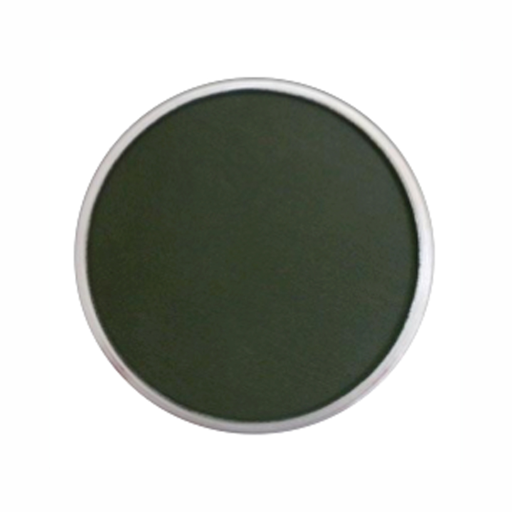 Panpastel Color Permanent Green Extra Dark