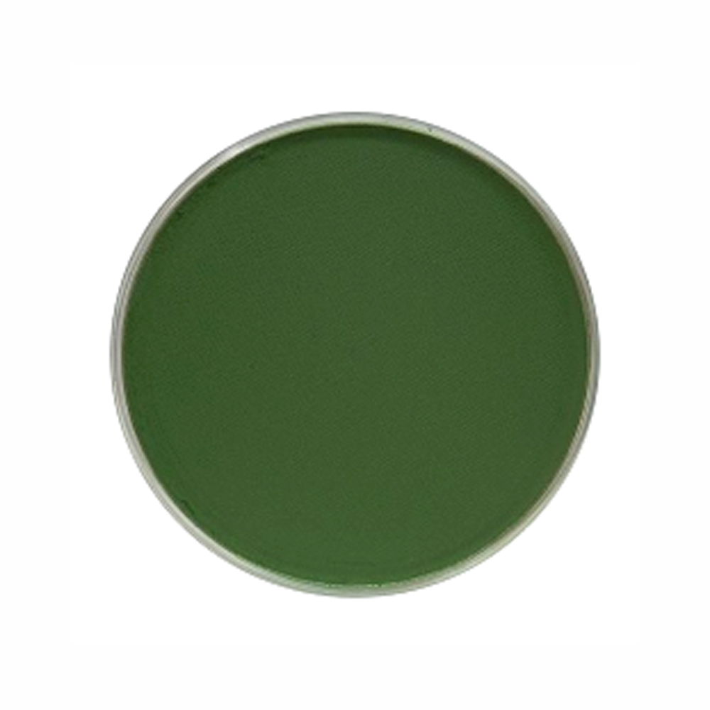 Panpastel Color Permanent Green Shade