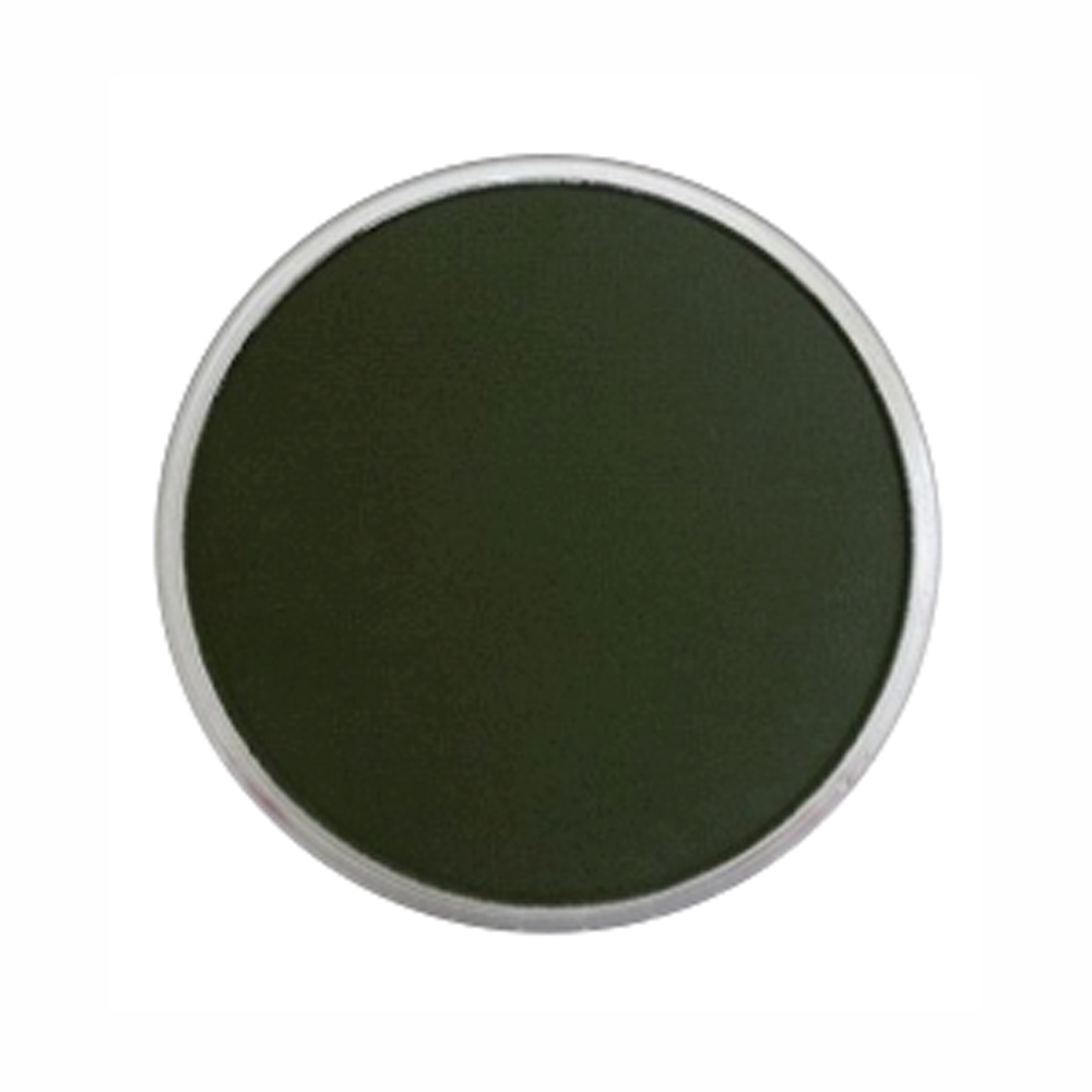 Panpastel Color Chromium Oxide Green X-Dark