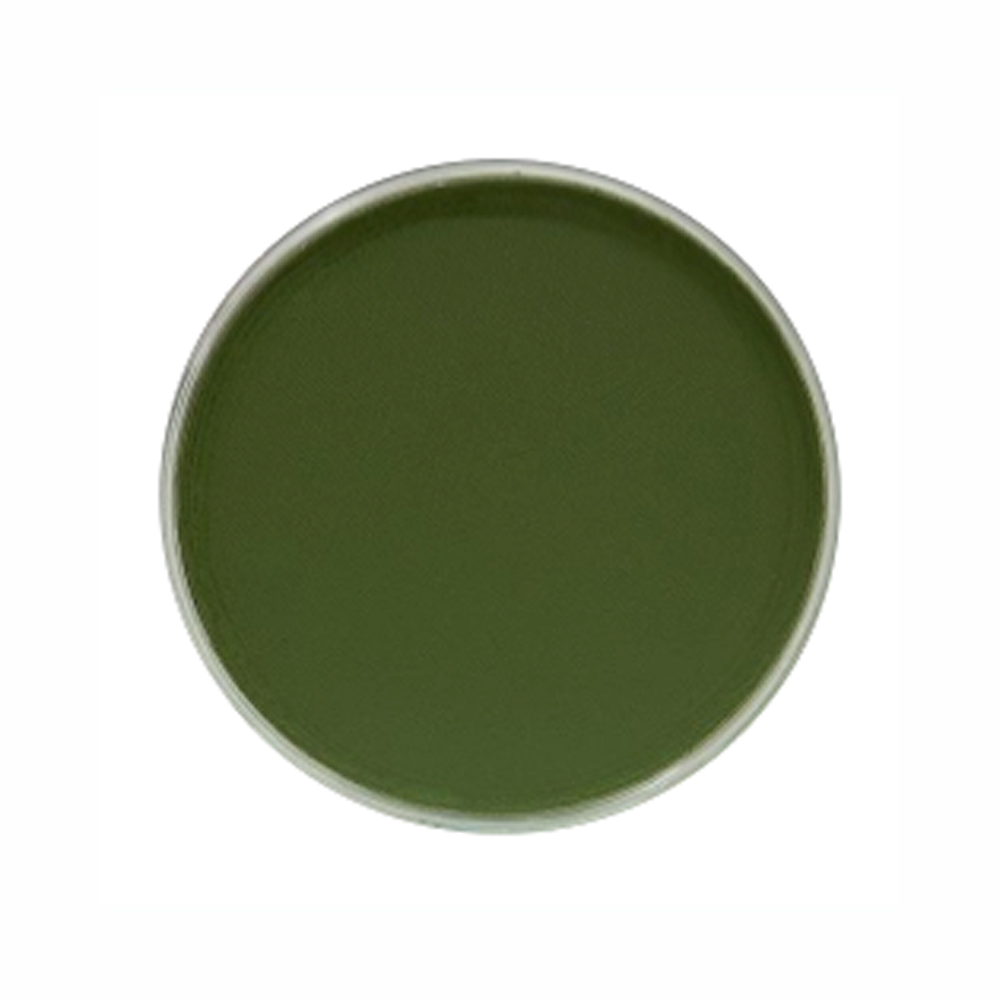 Panpastel Color Chromium Oxide Green Shade
