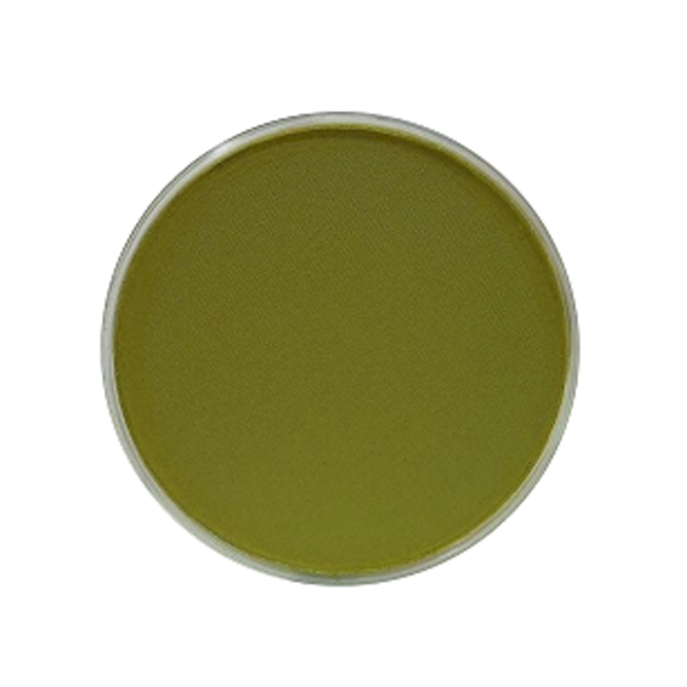 Panpastel Color Bright Yellow Green Shade