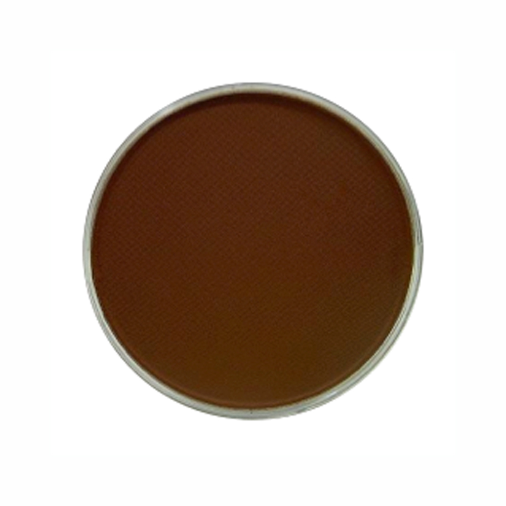 Panpastel Color Burnt Sienna Shade