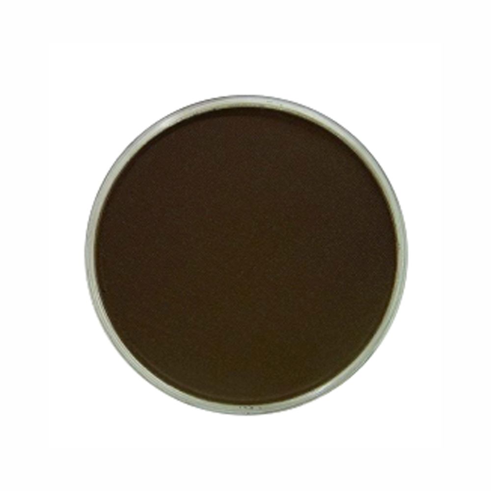 Panpastel Color Raw Umber Shade