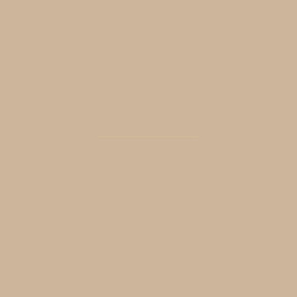 3M 230 30In X 10Yd Translucent Light Beige