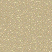 ORACAL 8810 Frosted 15in X 10yd 091 Gold