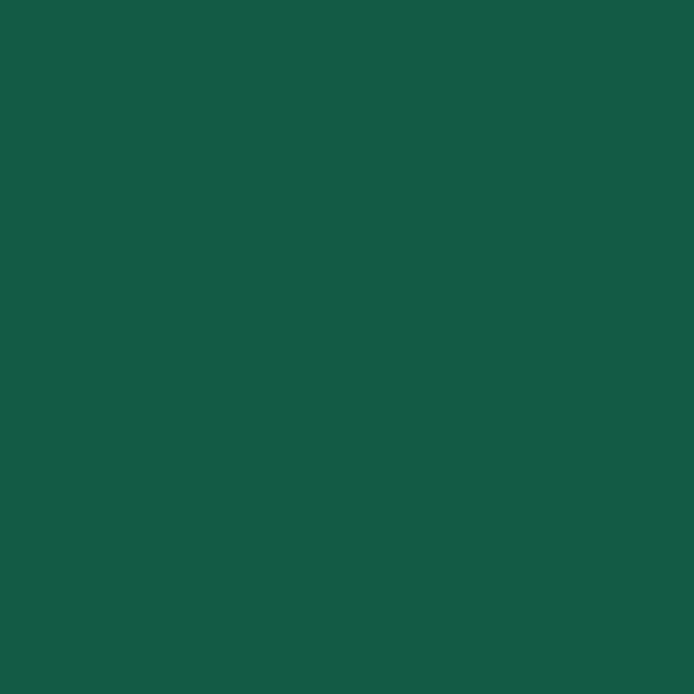 Gerbercolor Spot Dark Green