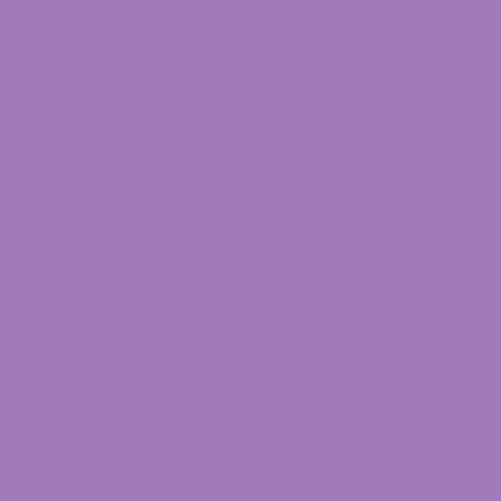 Gerbercolor Spot Light Purple