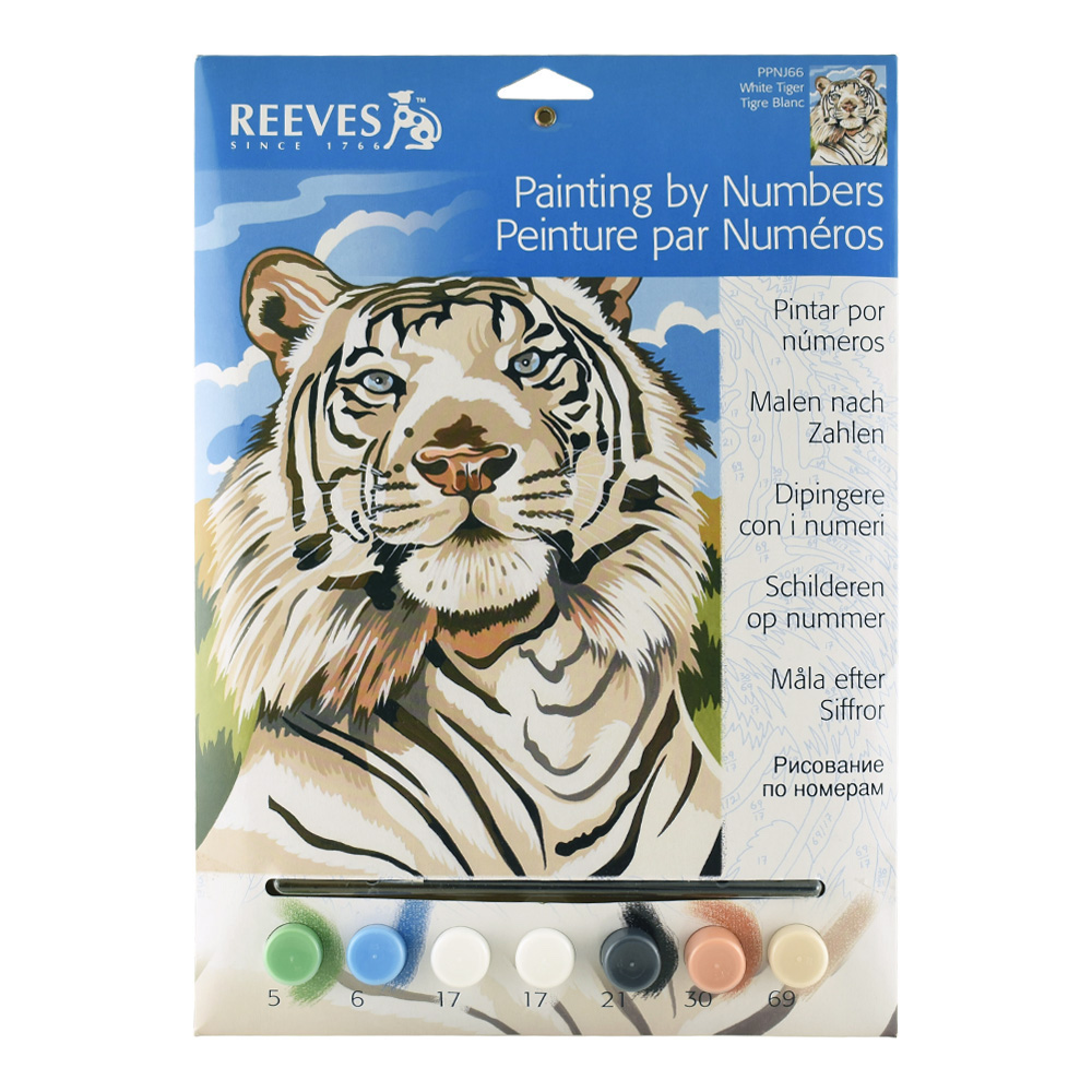 Junior Paint By Number Set White Tiger