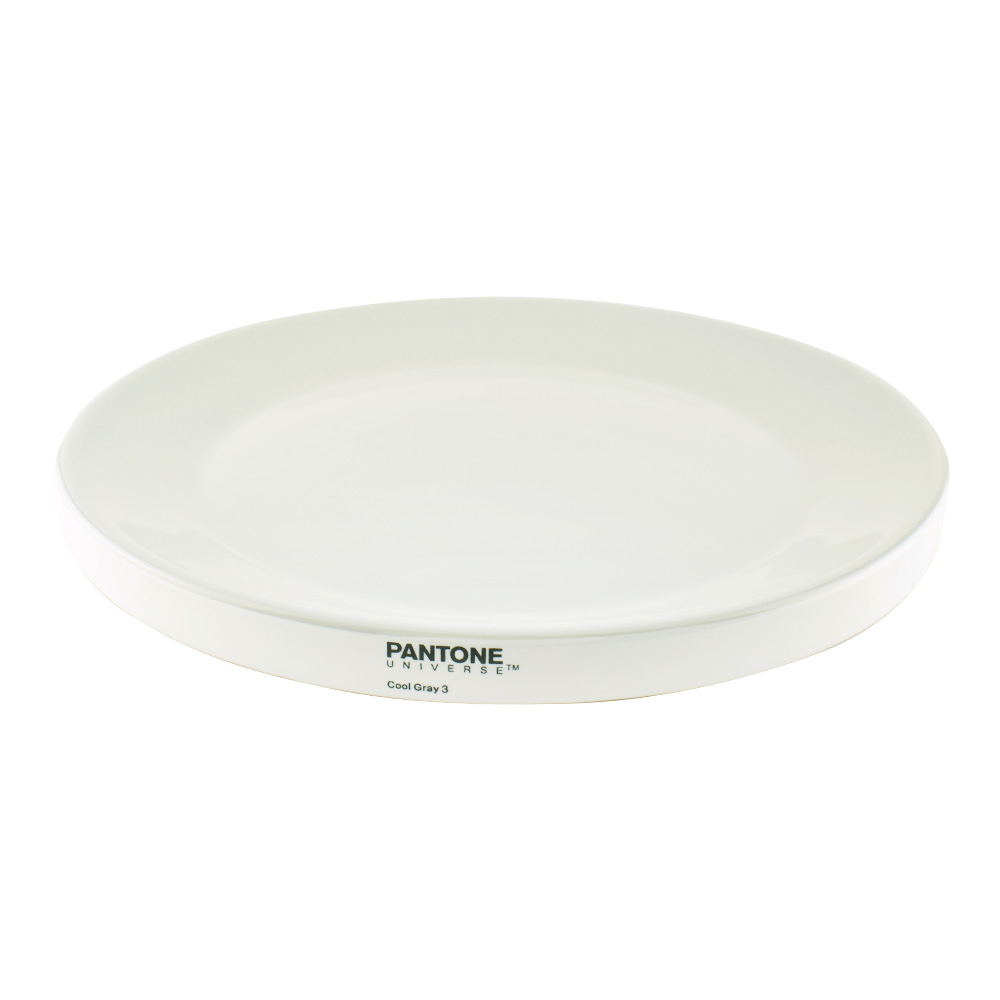 Pantone Universe Large Plate Cool Grey 3