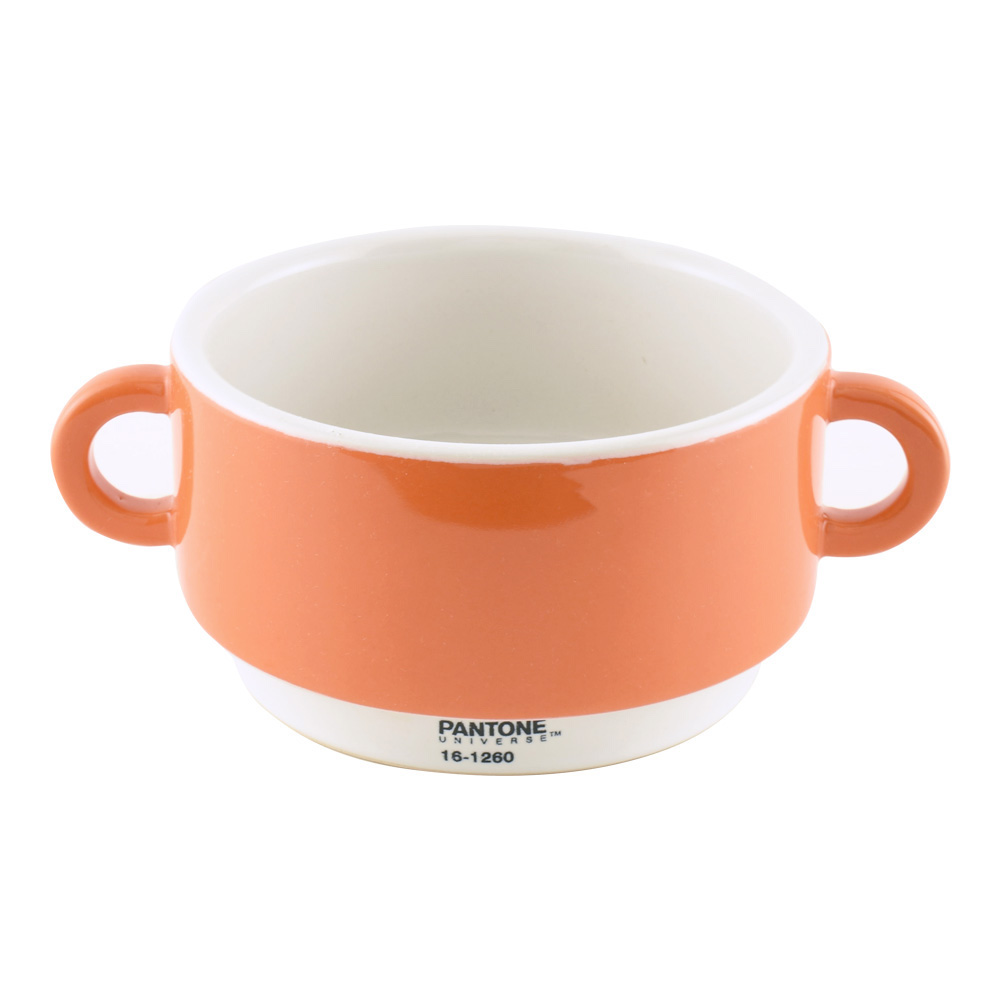 Pantone Universe Soup Bowl Orange 16-1260