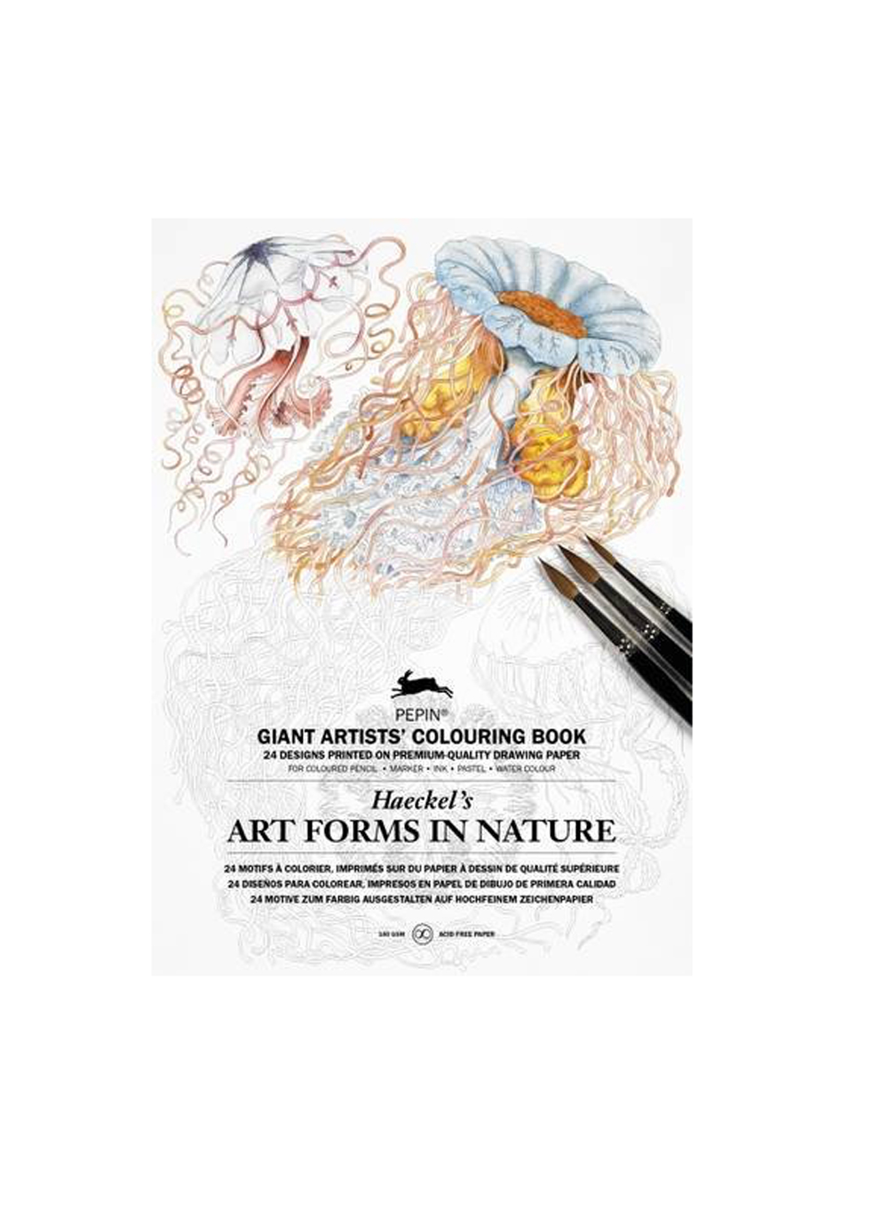 Giant Artists' Colouring Bk Art Form/Nature
