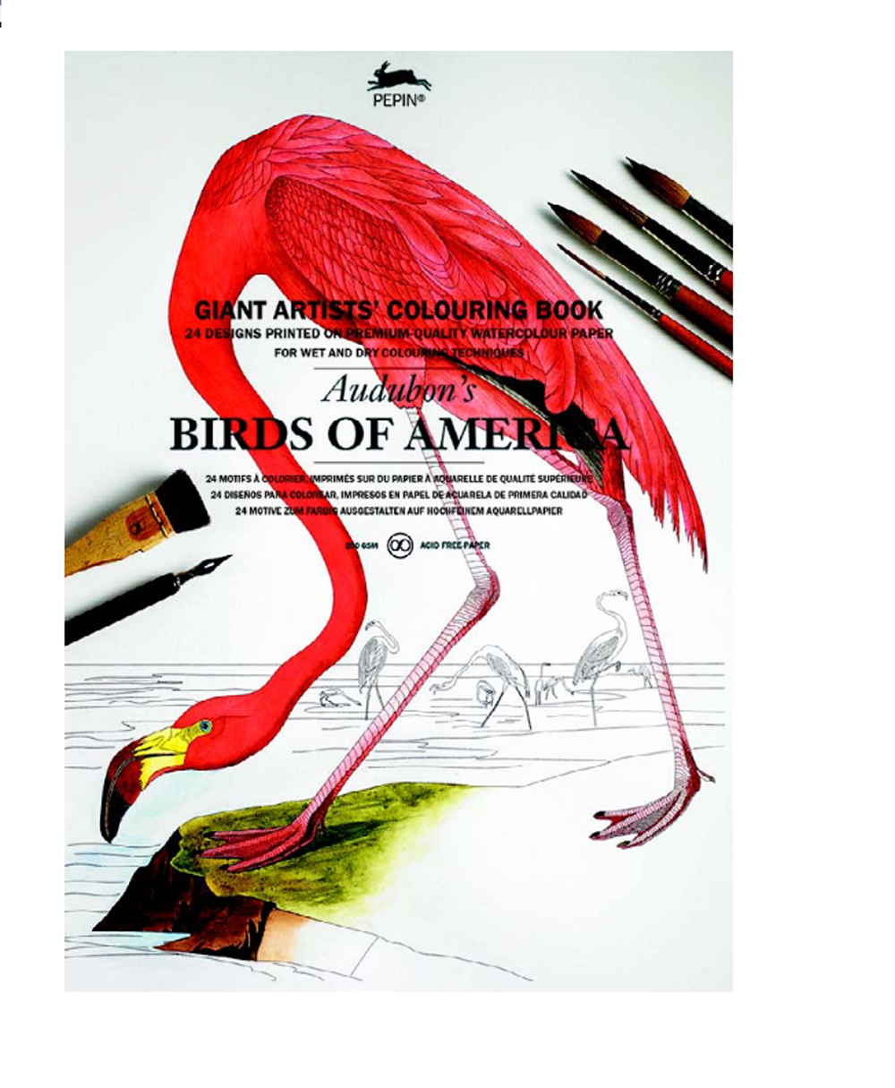 Giant Artists' Colouring Bk Birds Of America